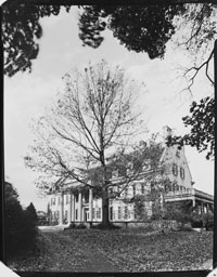 Eastman House Oak